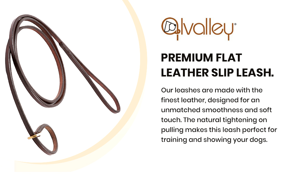 dog training leather collar slip lead leash long puppy large dogs leashes breed small rope black