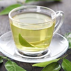 FGO Sencha Green Tea