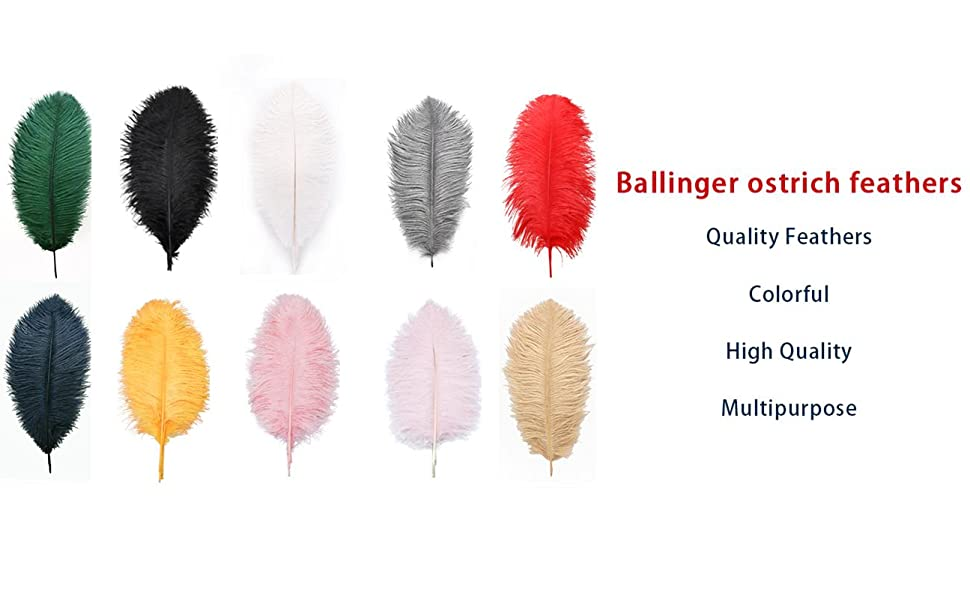 Ballinger ostrich feathers Quality Feathers Colorful High Quality Multipurpose