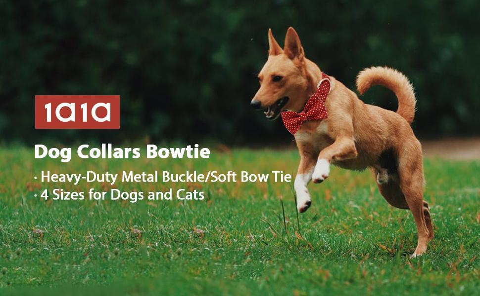 Dog Bowtie Collars