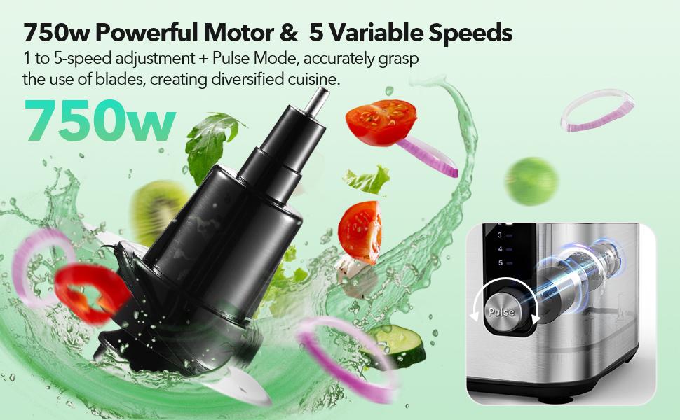 750w powerful motor pulse 5 speeds