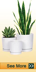 White Cylinder Ceramic Plant Pot
