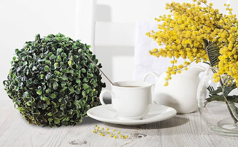 boxwood ball topiary on table