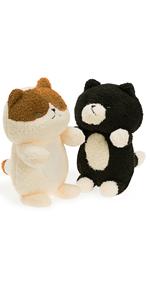 Calic Cat and Black Cat