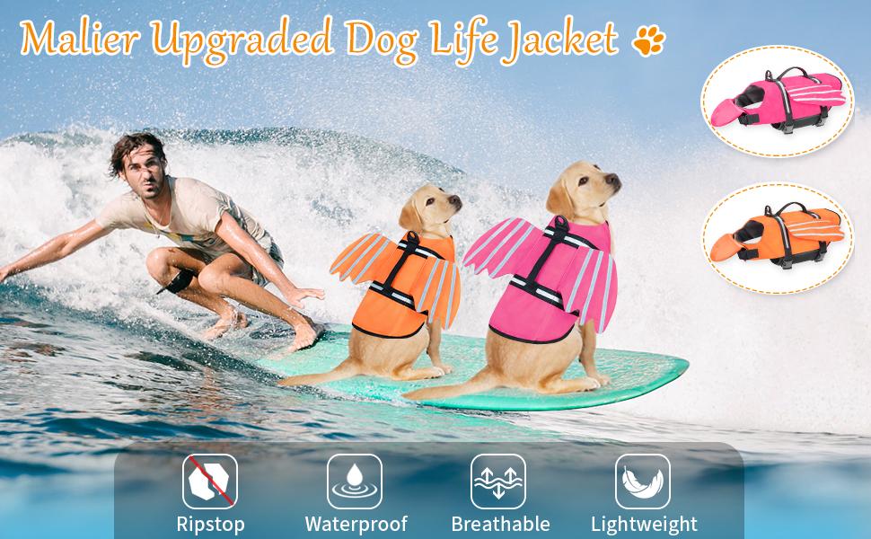 dog life jacket jacket
