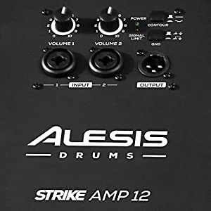 THE BACKSIDE OF THE ALESIS STRIKE AMP12 / IT HAS 2  VOLUME KNOB / 2INPUTS/ 1 OUTPUT.