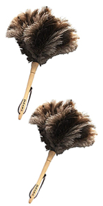 long feather duster