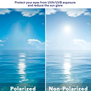 Polarized Swim Goggle