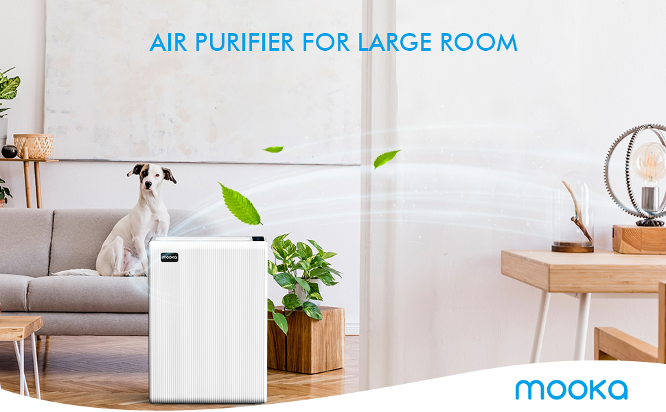 air purifier large room