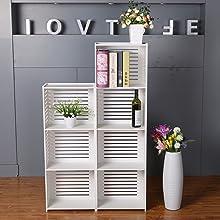 SS Arts book shelf rack