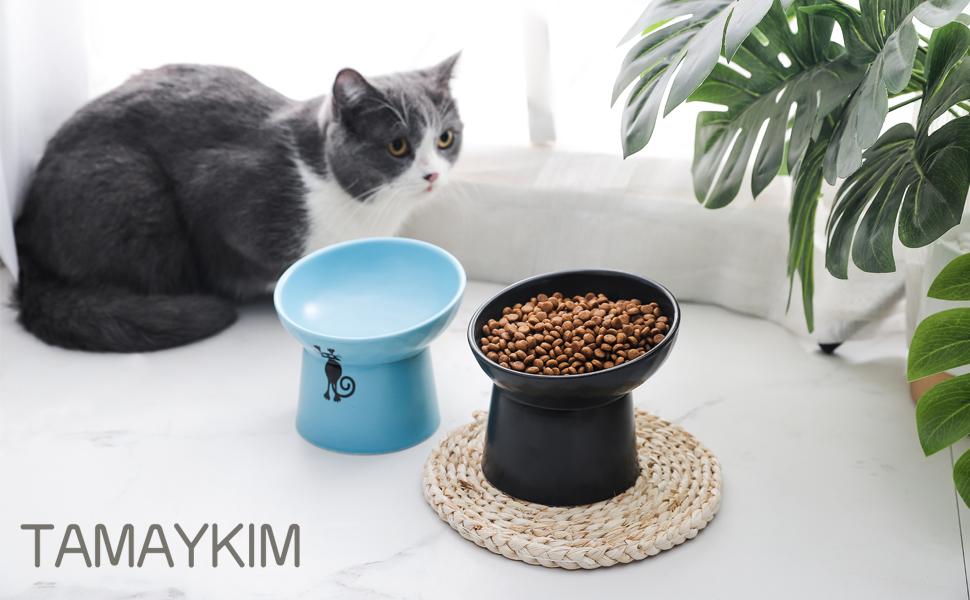 raised cat bowls