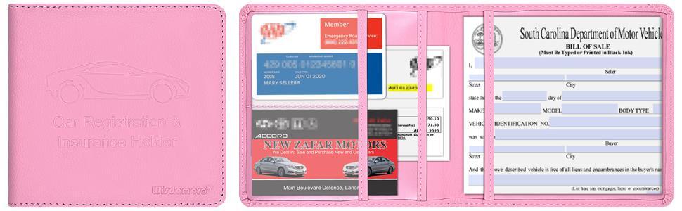 car registration and insurance holder