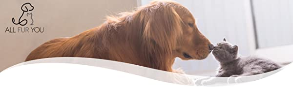 All Fur You logo anti splash bowl spill proof water dog cat