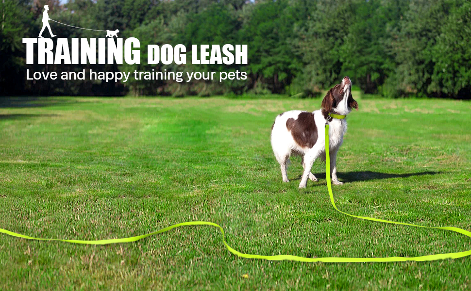 Leash for Large Medium Small Dogs