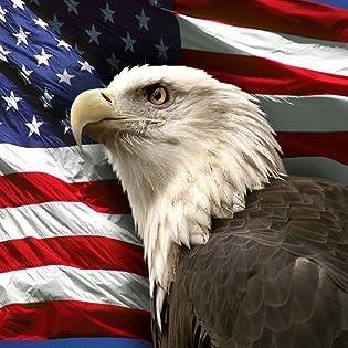US American Flags