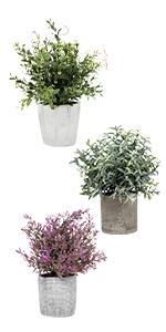 artificla topiary