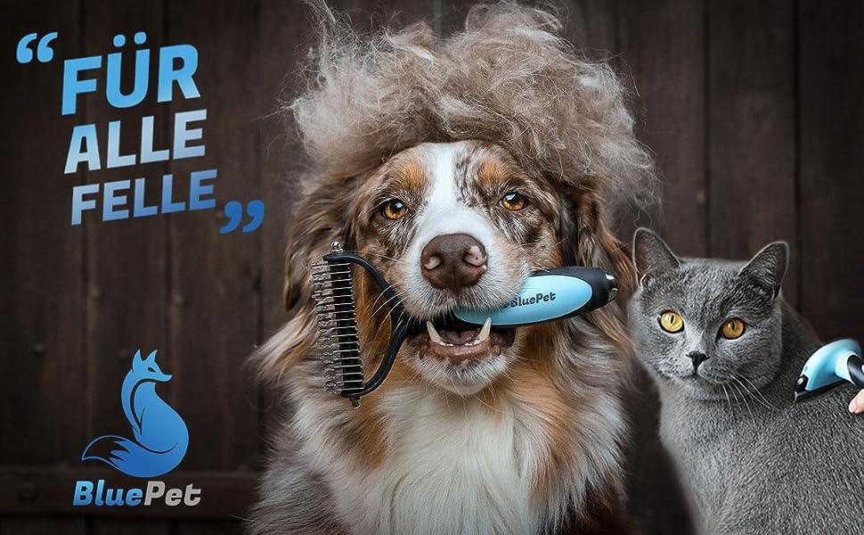 BluePet Über Uns Hundebürsten Fellwechsel Krallenschere Katzenbürste langhaar Kurzhaar Katze Hund