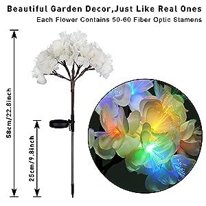garden light flowers