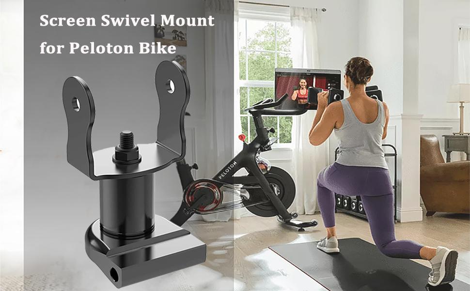 Screen Swivel Mount