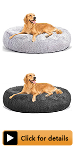 large big dog bed