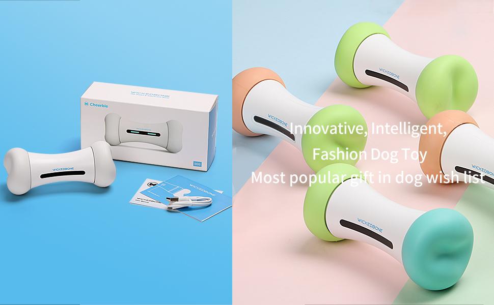dog smart toys