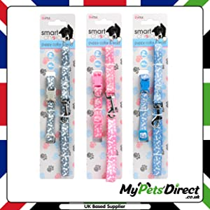 Lead and Collar 2-in-1 Set for Small Dogs and Puppies