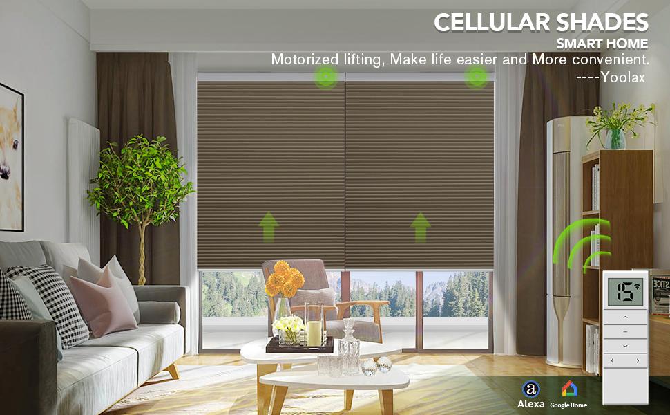 alexa blinds for windows