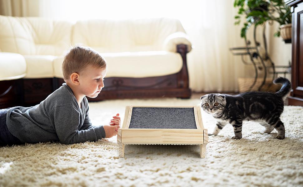 Cat Scratcher for Indoor Cats