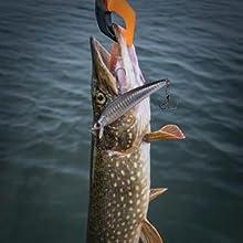 Pike Fishing Lures