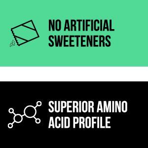 protein powder without artificial sweeteners, strawberry powder, protein shakes, vegan protein