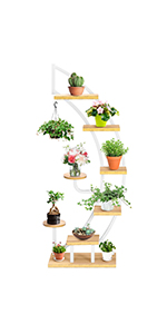 6-Tier Curved Plant Stand