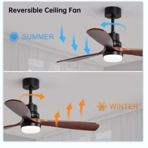 Sofucor Ceiling Fan Reversible Funtion