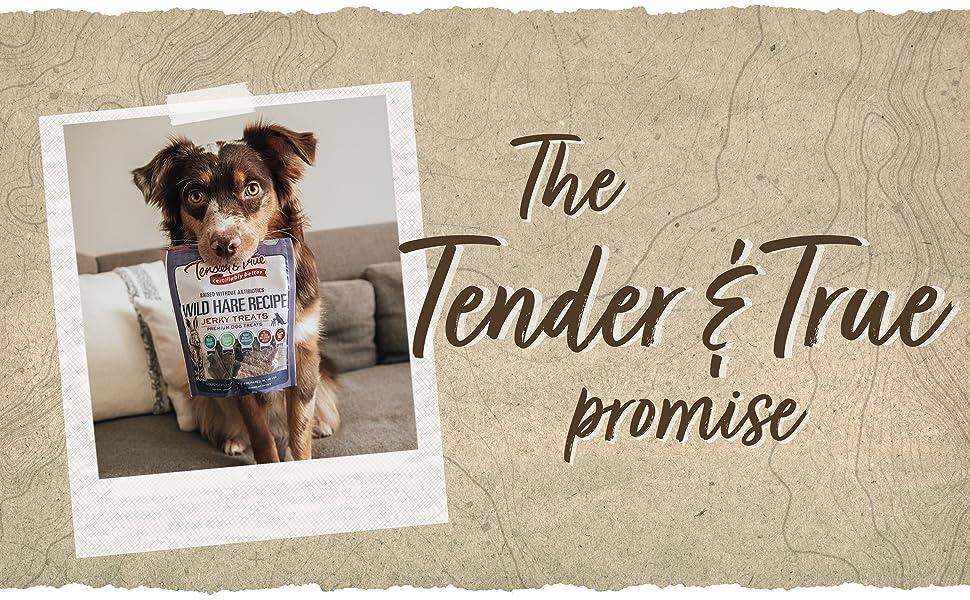 The Tender amp; True Promise