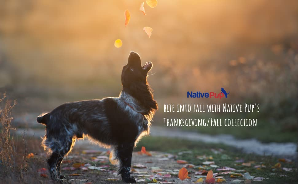 Native Pup Fall Collection