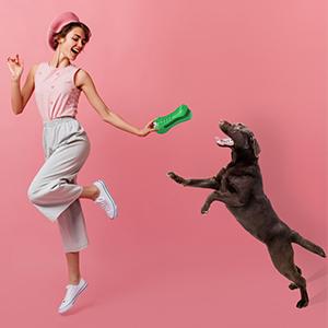 Dog Toys for Medium Large Pet dog birthday gift interactive dog toys  dog enrichment toys durable