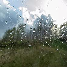 Window Condensation Moisture Absorber