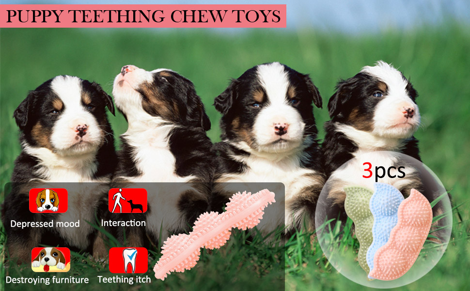 PUPPY TEETHING CHEW TOYS