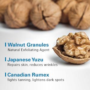 Walnut Granules, Japanese yuzu, Canadian rumex