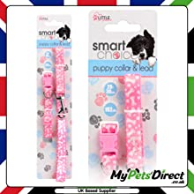 Pink with White Printed Bone Design 2-in-1 Dog Lead and collar Set