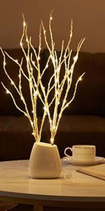 70L birch branch