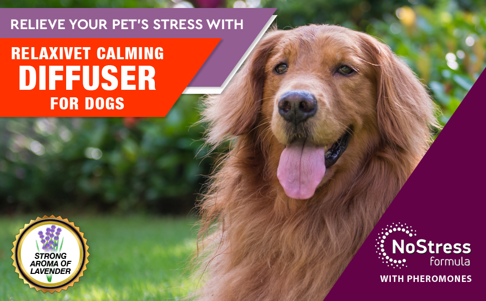 pheromone calming diffuser for dogs anxiety stress relief refill