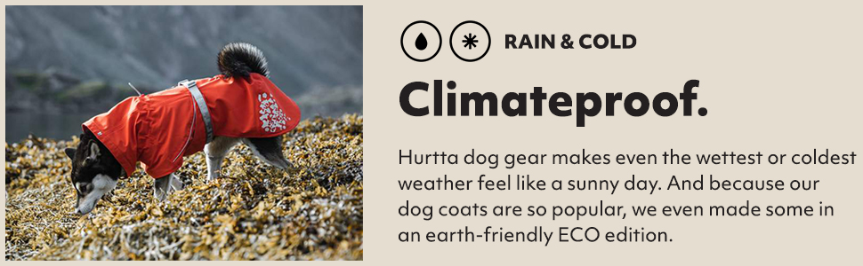 warmest dog coat