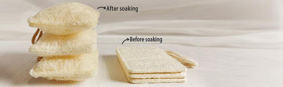 dishwashing sponges,natural dish scrubber
