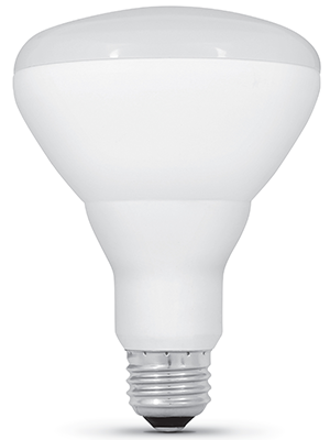 feit electric, br30, light bulb, led, recessed lights