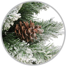 Close up photo of Angel Pine tree, wreath and garland species