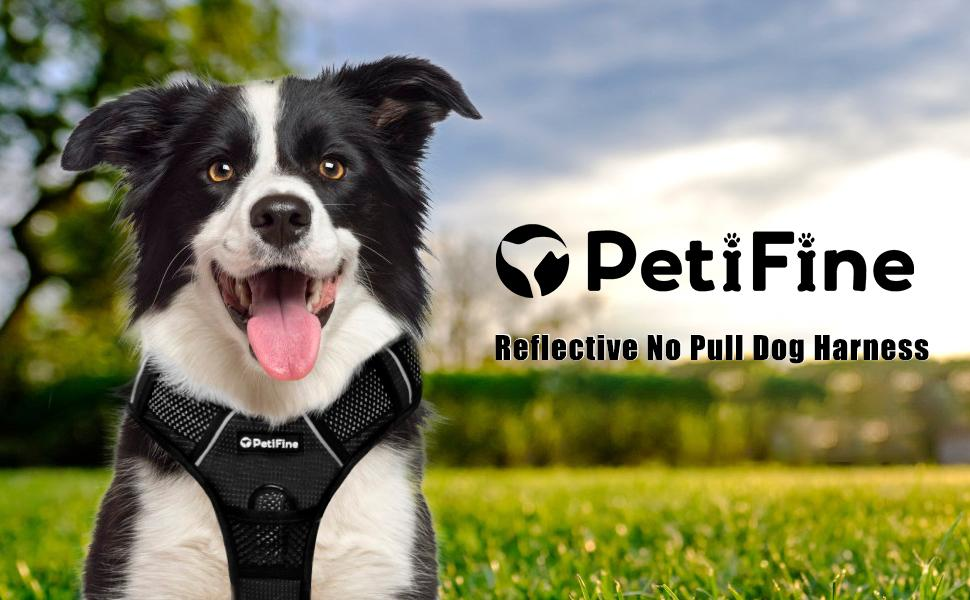 red full reflective no pull dog harness