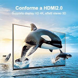 Supporto display HD 4K, effetti stereo 3D