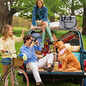 The Perfect Travel Kit For Traveling Dogs