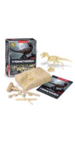 dinosaur excavation kits