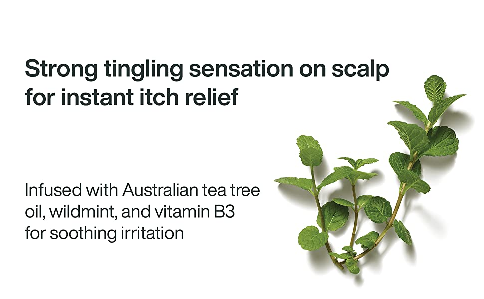 Tea tree oil, wildmint, vitamin B3 leaves a tingling sensation on scalp for instant itch relief